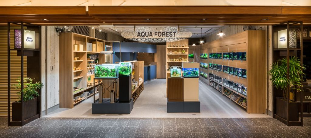 【TAX FREE】AQUA FOREST in Solamachi