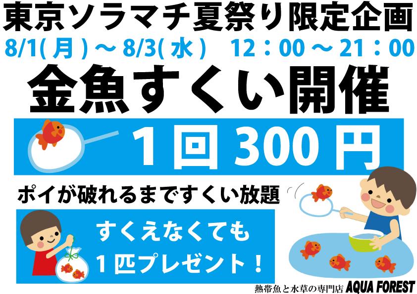 【ソラマチ店】金魚すくい開催 & スタンプウッドSSサイズ入荷のお知らせ