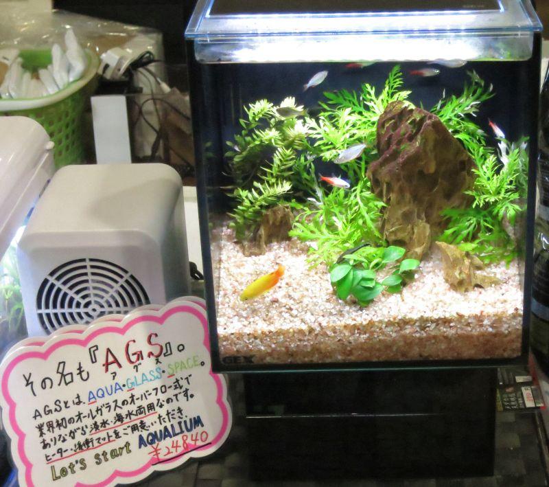 【新宿店】7/29~8/4日限定 日替わりブログ特価品 7/29金曜日