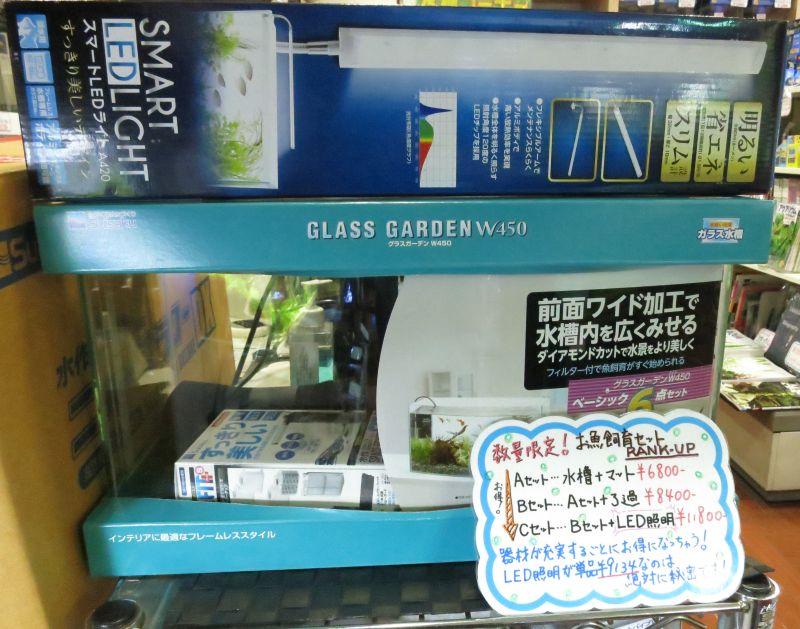 【新宿店】オススメ水槽セットのご紹介&流木入荷