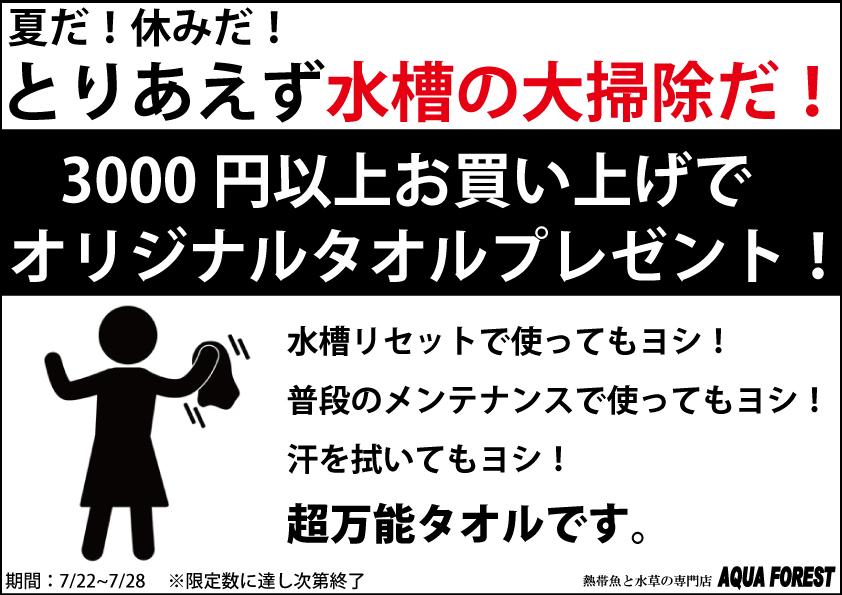 【新宿店】大掃除キャンペーン!3000円以上購入でタオルプレゼント!(新宿店限定)