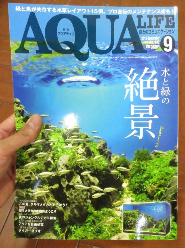 【新宿店】アクアライフ入荷!水草特集号です!アクアジャーナルは限定ポスター付録付きです。