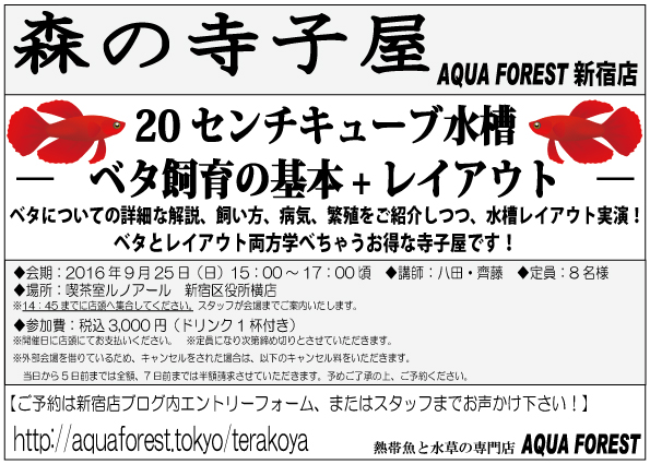 【新宿店】2016年9月25日(日)森の寺子屋募集中です(残り2名)