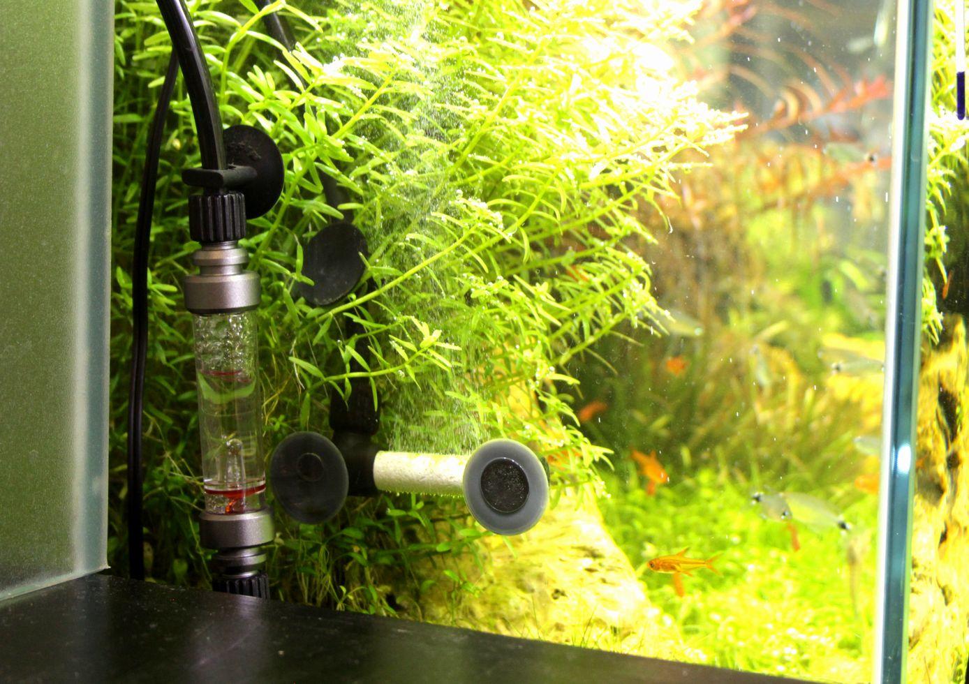 CO2 CO2ミストストーン・ルーペカウンター 新