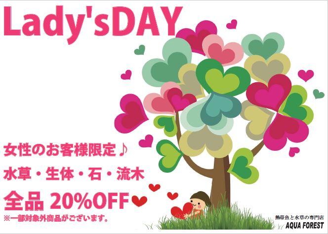 【ソラマチ店】明日は月に一度のレディースデイです!