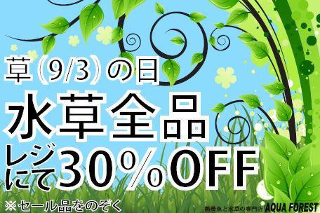 【ソラマチ】草の日!!!