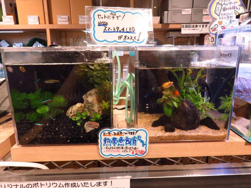 【ソラマチ店】テトラ スマート熱帯魚飼育セットSP-17TF ご紹介