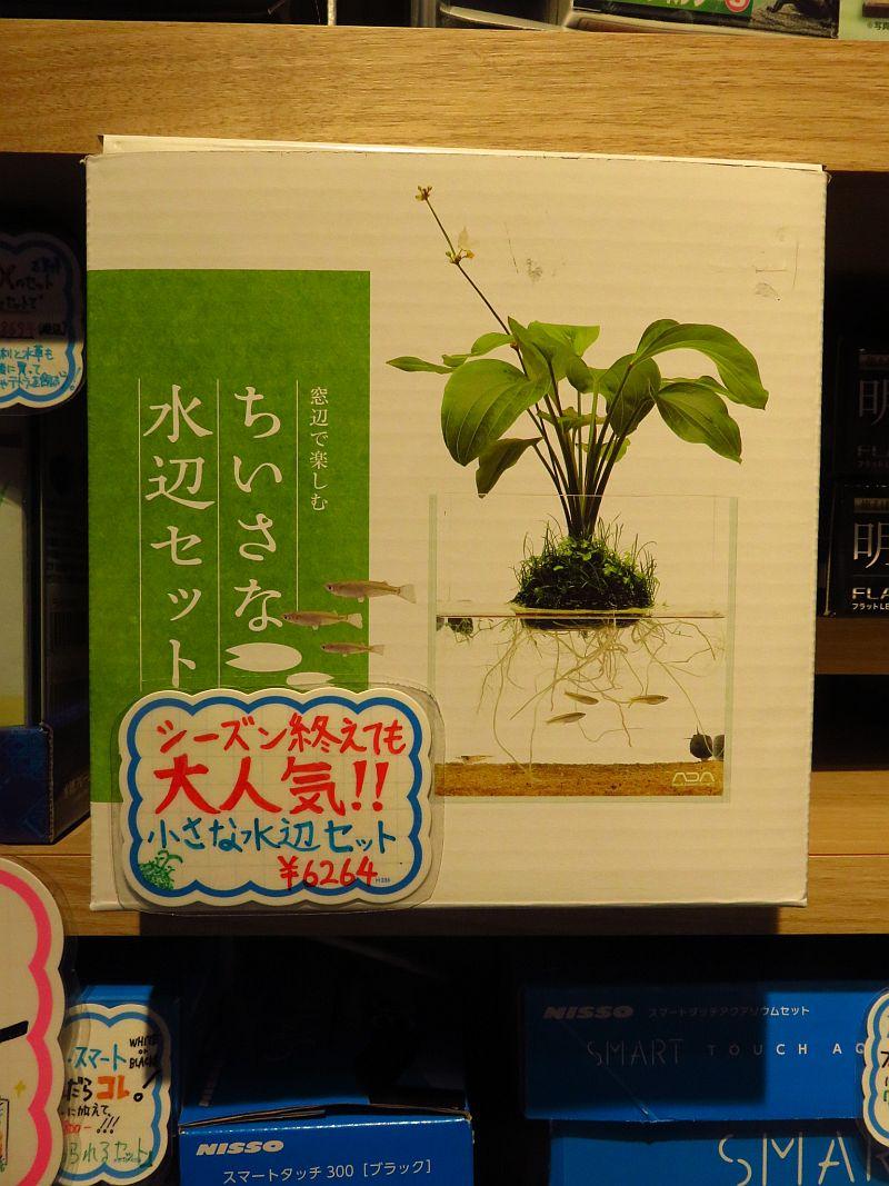 【ソラマチ店】オススメ商品 & ラッピングサービスご紹介!
