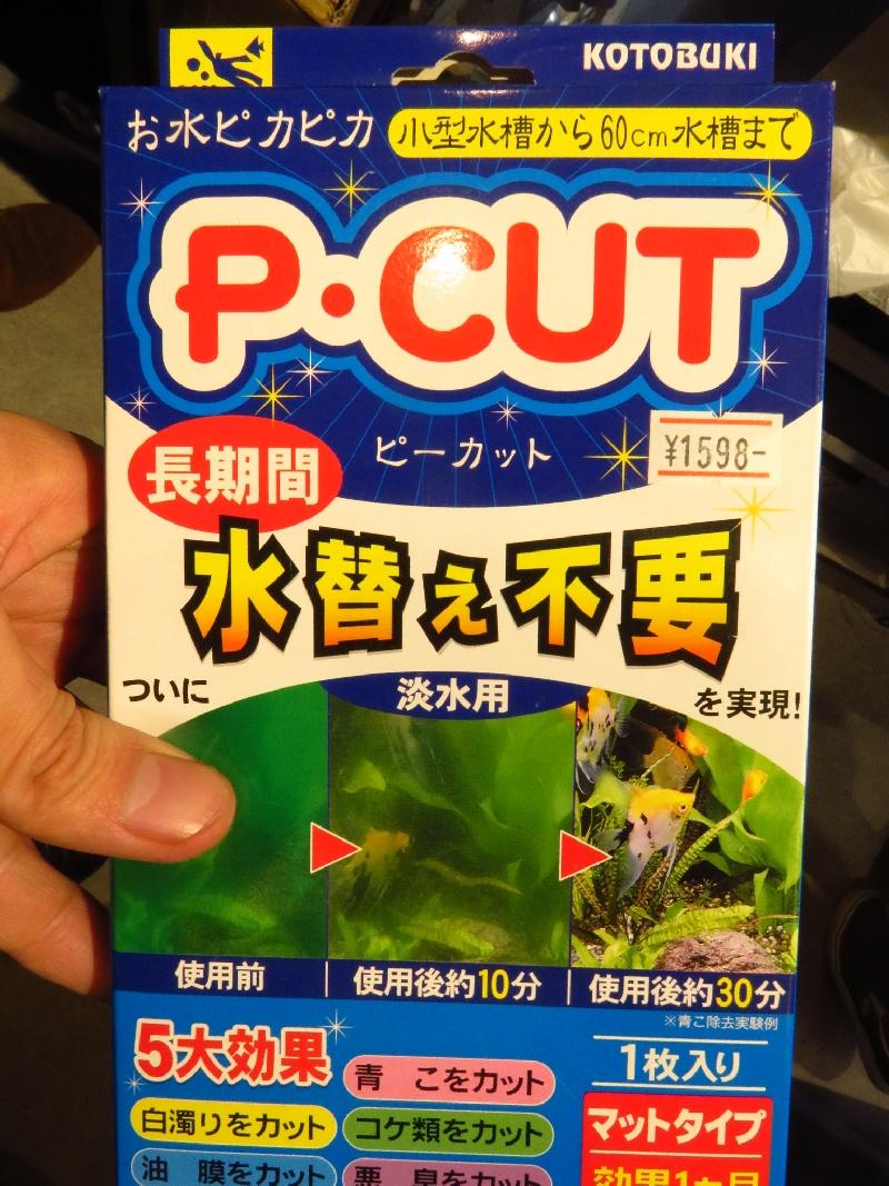 【ソラマチ店】アオコ対策に! P・CUTのご紹介です!
