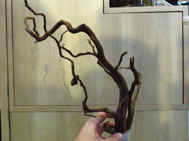 【ソラマチ店】良質な枝流木入荷しました!