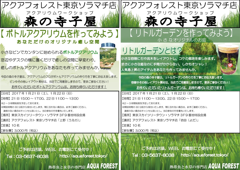 【ソラマチ店】明日・明後日は「森の寺子屋」開催日です!
