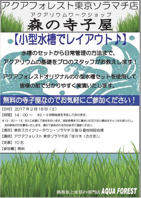 【ソラマチ店】2月18日は寺子屋開催日です♪