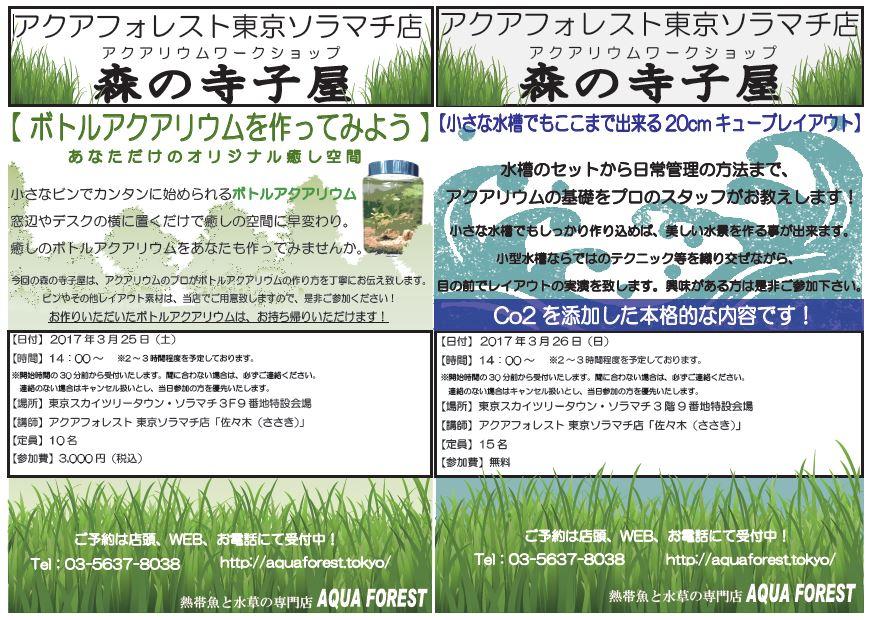 【ソラマチ店】予告!3月25・26日に森の寺子屋開催します!
