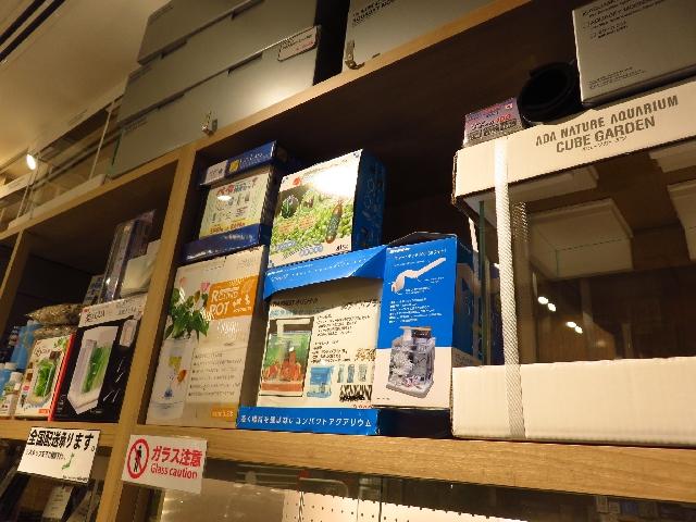 【ソラマチ店】2月11日から春のアクアリウムフェア大開催!