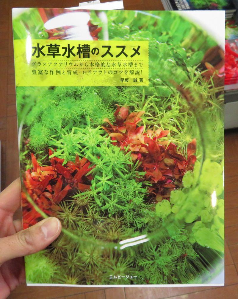 【新宿店】MPJ書籍「水草水槽のススメ」在庫切れ中。2月7日午後入荷予定です