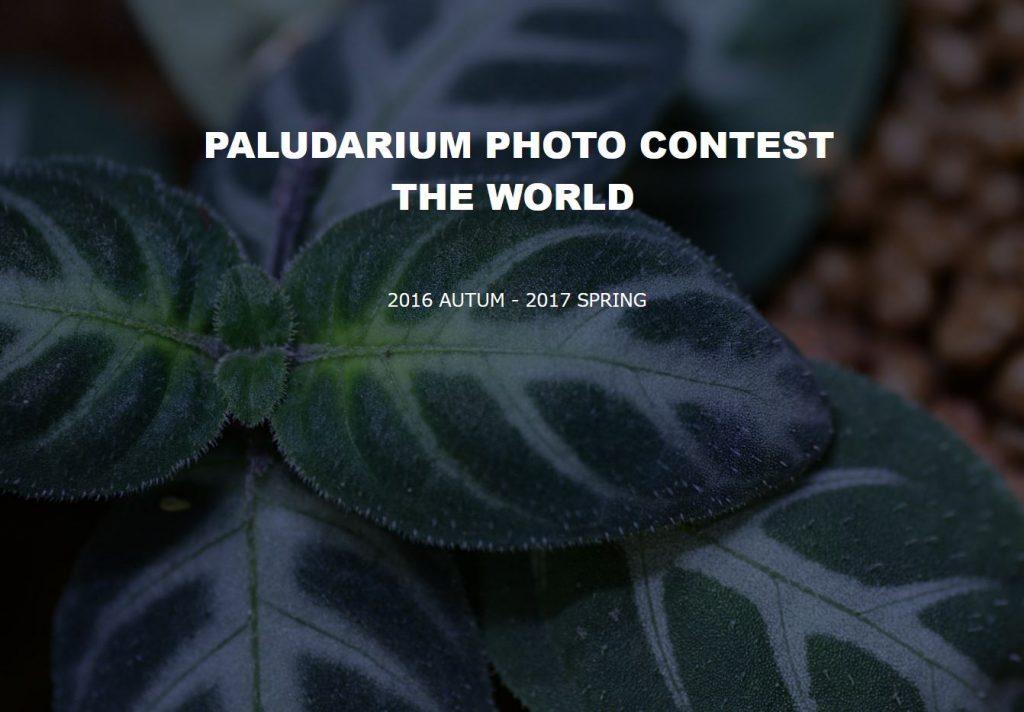 世界パルダリウムフォトコンテスト