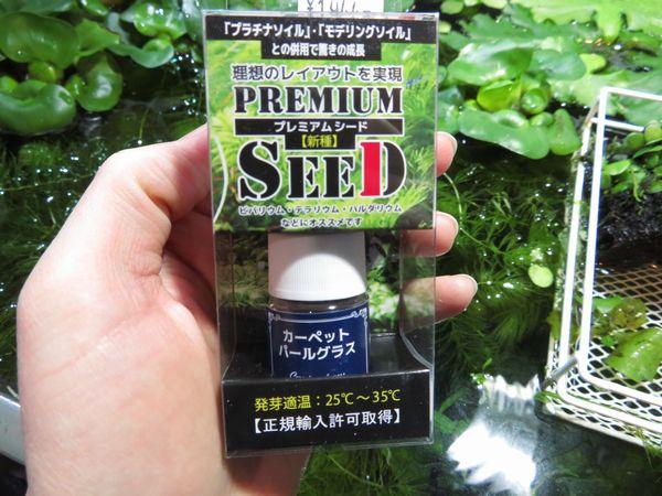【新宿店】種蒔きしてみました!