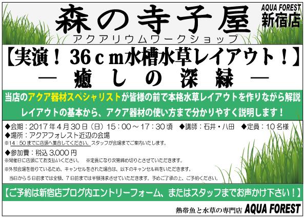 【新宿店】4月30日開催!「森の寺子屋」参加者募集中です!