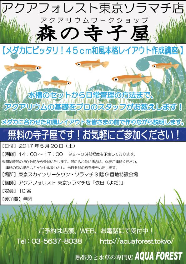【ソラマチ店】5月20日(土)森の寺子屋、開催します!