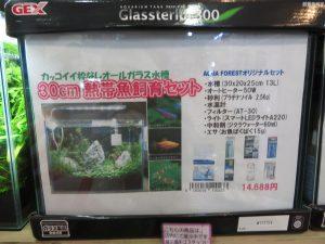 【新宿店】6月25日森の寺子屋に向けて~CO2と水草~
