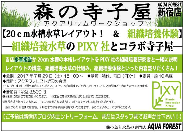 【新宿店】7月開催!森の寺子屋告知