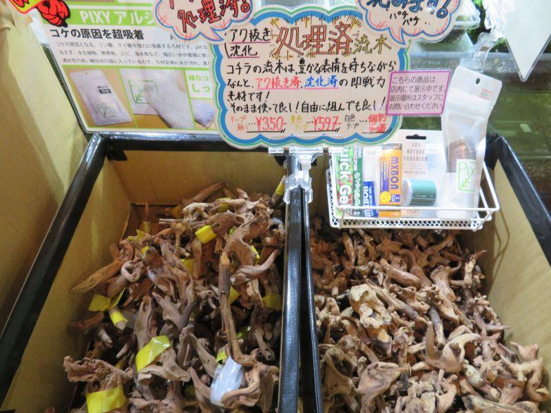 【新宿店】流木と本と瓶と寺子屋と引越しのハナシ