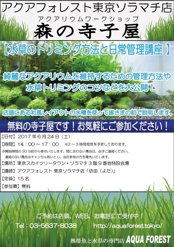 【ソラマチ店】森の寺子屋開催