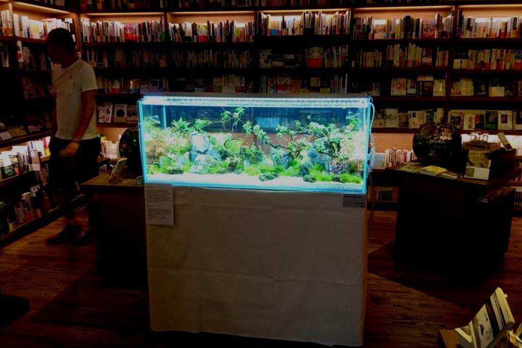 代官山T-SITE ~書店の中の小さい水族館~ 設営しました!