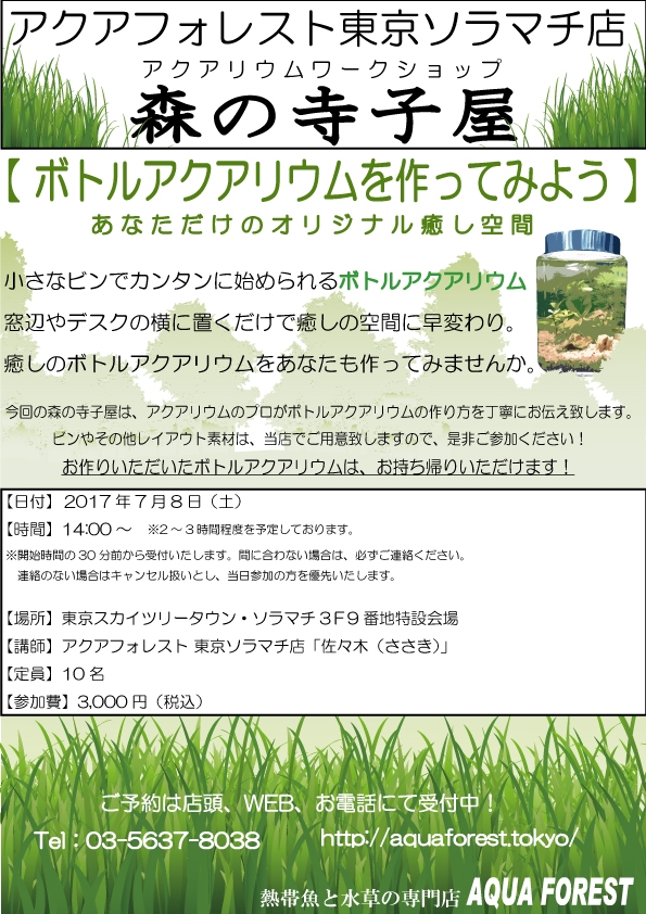【ソラマチ店】7月8日は寺子屋です!