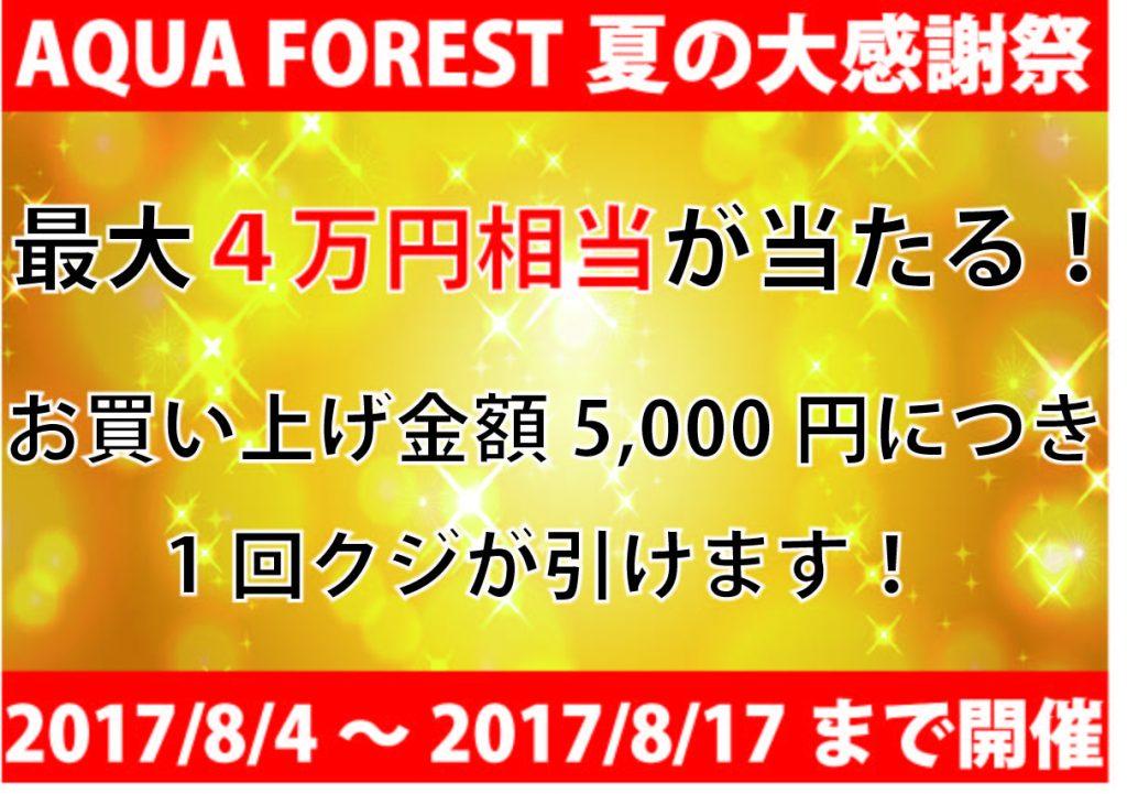 【新宿店】夏の大謝恩セール開催!8月4日~8月17日!
