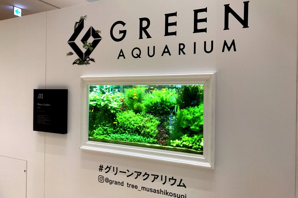 【イベント告知】グリーンアクアリウム開催中です!