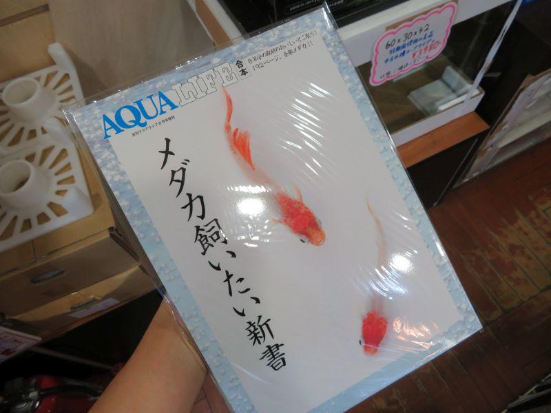 【新宿店】新刊と素材の入荷、AGSのレイアウト。