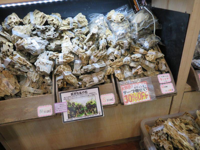 【新宿店】冬セール開幕!年末年始の営業について