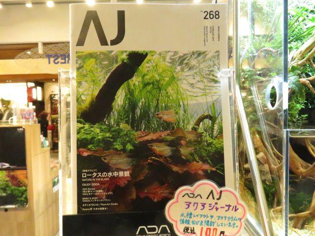 【ソラマチ店】AJ&雲山石入荷しました!