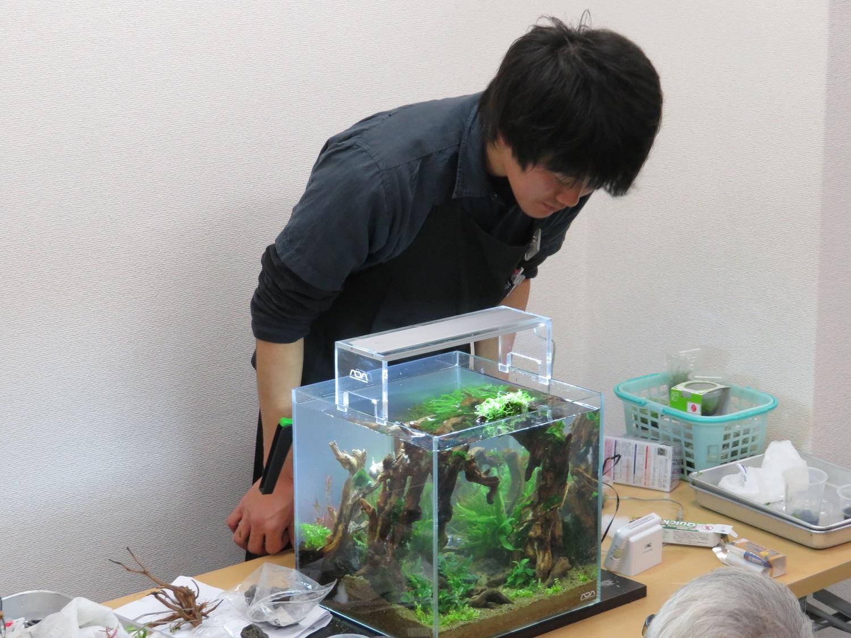 【新宿店】森の寺子屋30cmキューブ水槽レイアウト実演―美しい水草の森―終了しました!!