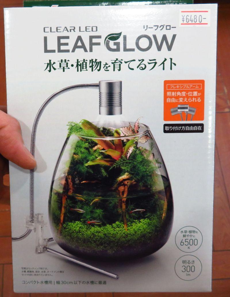 【新宿店】GEX リーフグロウ新発売!