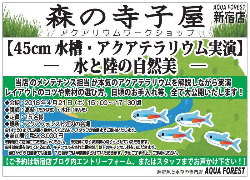 【新宿店】2018年4月21日(土)森の寺子屋45cmアクアテラリウムレイアウト(滝付き)実演を開催します!!