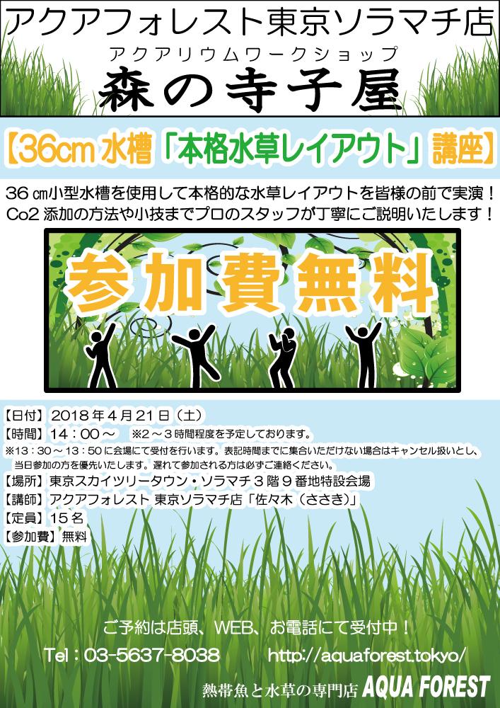 【ソラマチ店】森の寺子屋、参加者1名募集します!