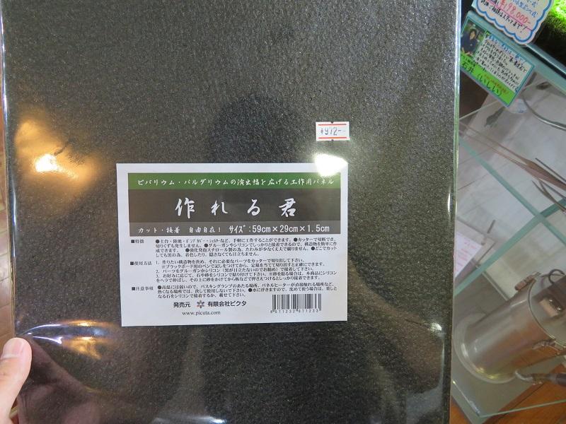 【新宿店】アクアテラリウム新商品&アクアテラリウムオススメ植物その1