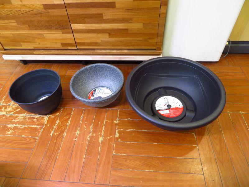 【新宿店】ビオトープ用のプラ鉢、植物入荷しました!