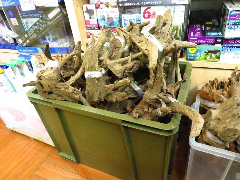 【新宿店】流木、石入荷しました!