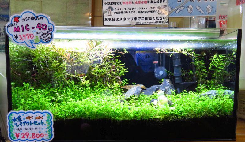 【新宿店】発酵式二酸化炭素添加キット・・・効果ありました!
