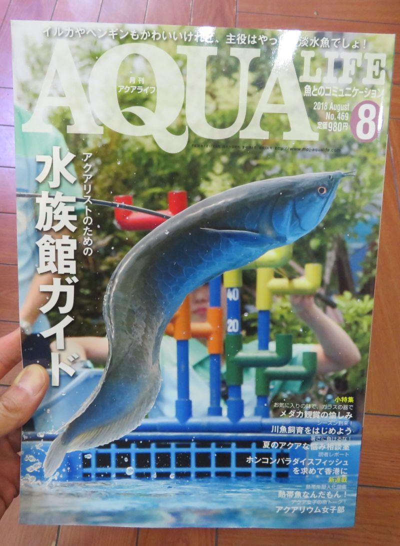 【新宿店】月刊アクアライフ、アクアジャーナル入荷しております。
