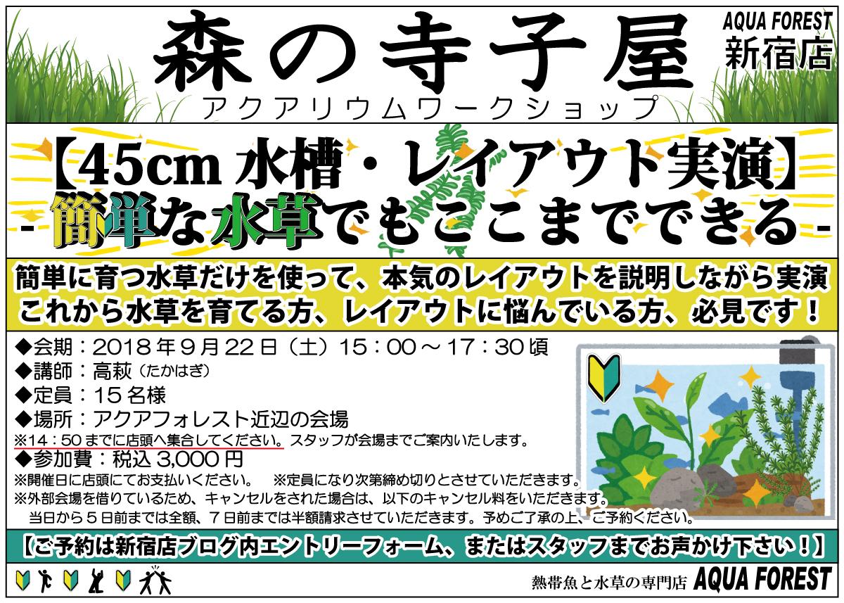 【新宿店】2018年9月22日(土)森の寺子屋【45cmレイアウト実演-簡単な水草でもここまでできる-】