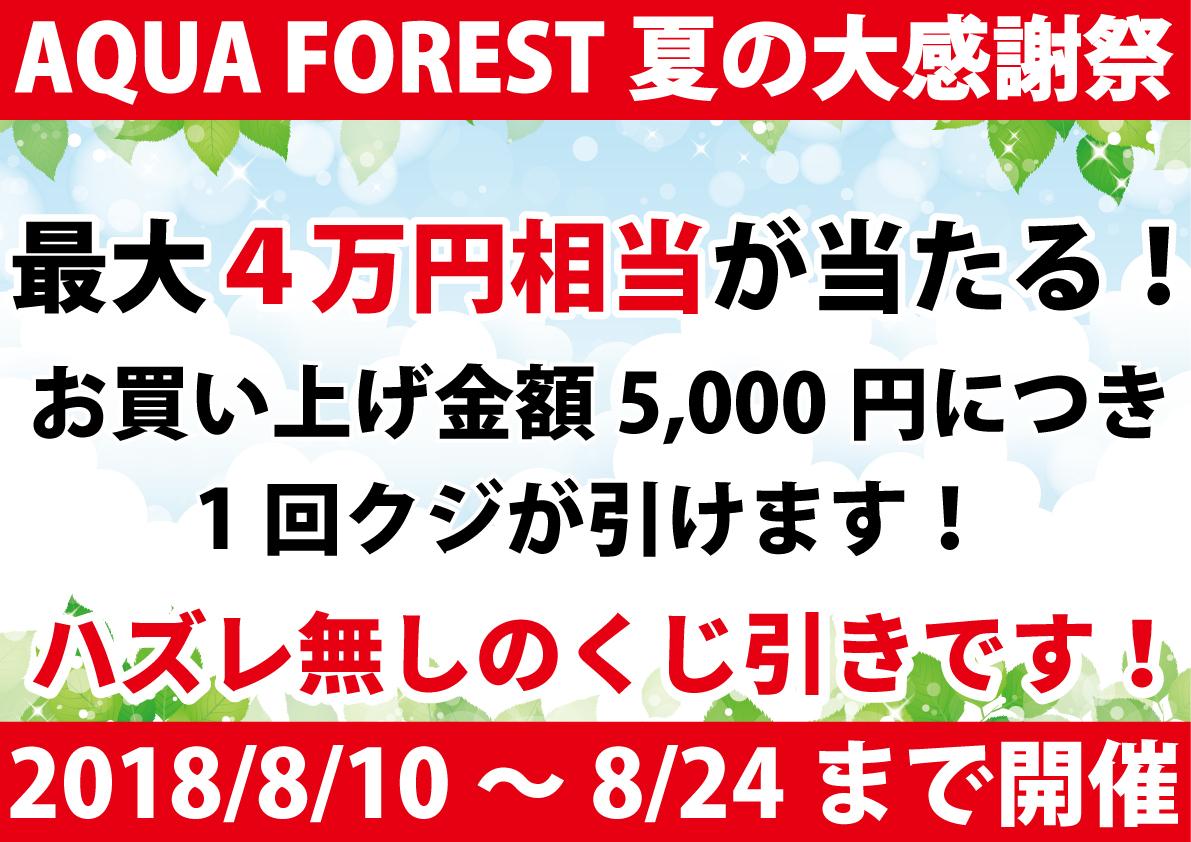 【新宿店】夏セール開催中です!