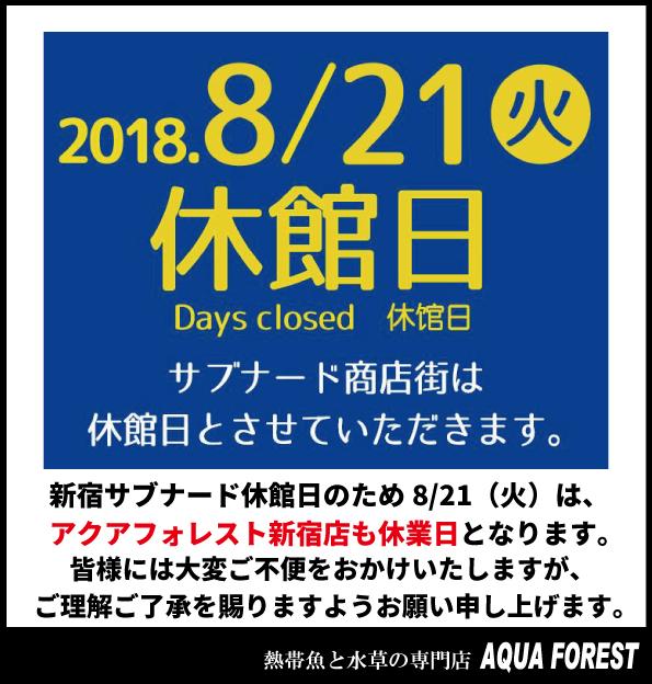 【新宿店のみ】8月21日(火)は休業とさせていただきます。