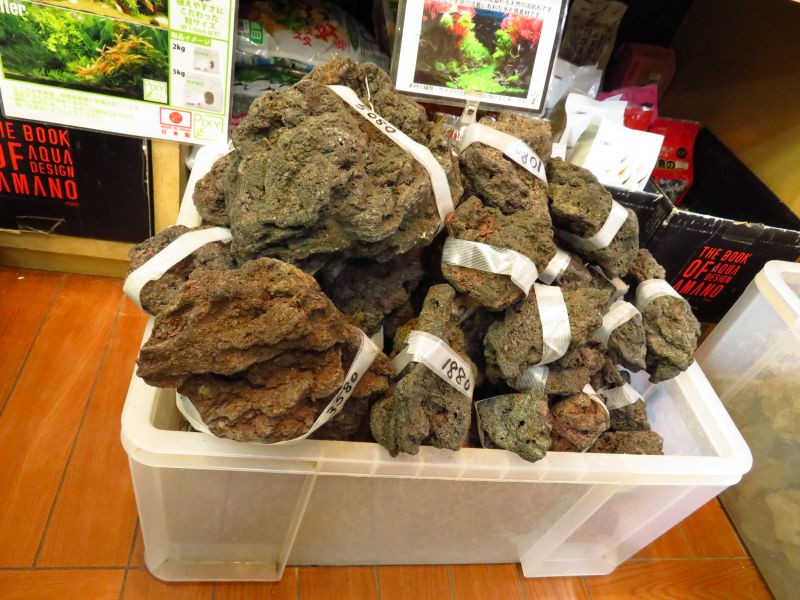 【新宿店】国産溶岩石がたくさん入荷しました!