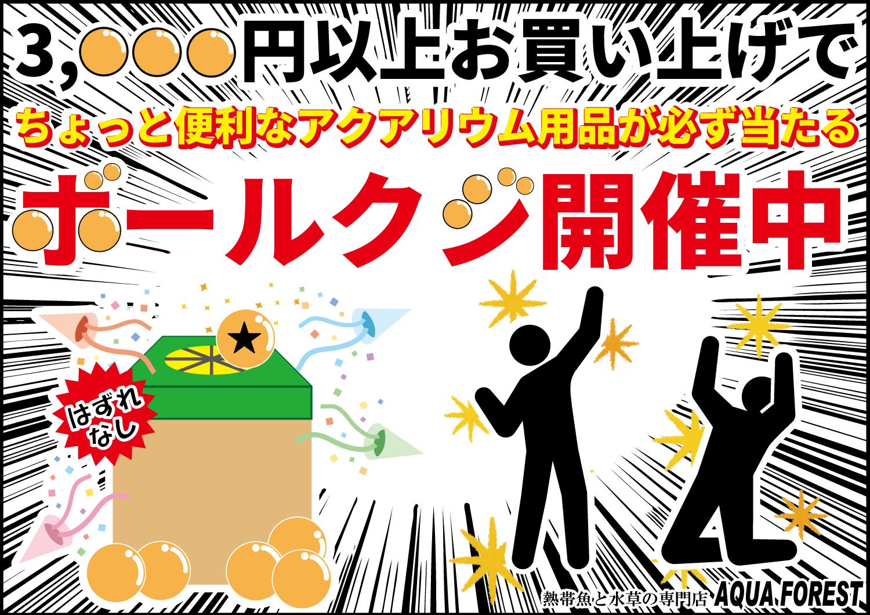 【新宿店】3000円以上のお買い物でボールクジにチャレンジ!