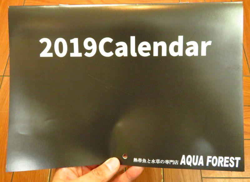 【新宿店】アクアフォレストオリジナルカレンダー発売!
