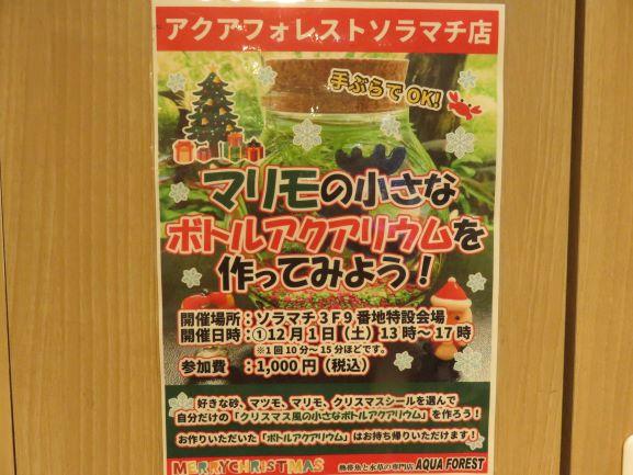 【ソラマチ店】クリスマスの飾り付けは・・・